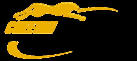 Cheetah Editing Logo.png