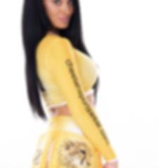 Cheetah Crop and Pleated Skirt.jpg