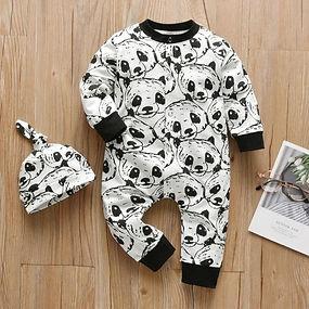 Panda A.jpg