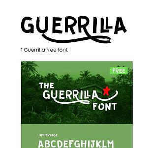 Guerrilla Font.JPG