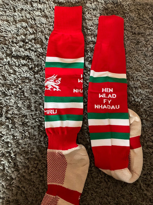 Premier Euro Sock - Welsh Special