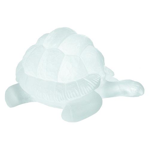 Tortoise Ice