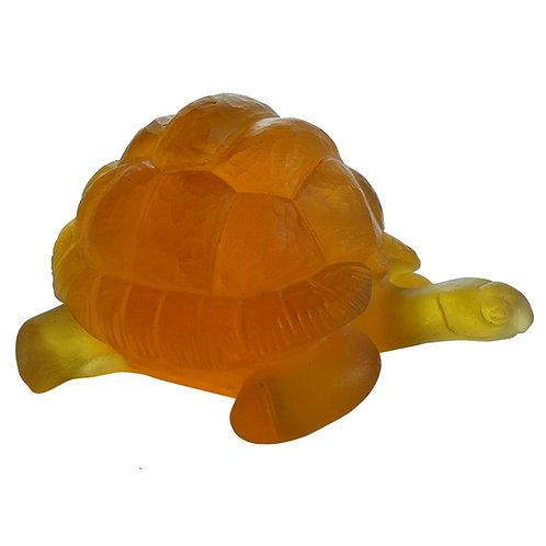 Tortoise Amber