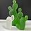 Thumbnail: Mini-Cactus Ice