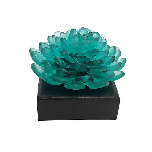 Lillies of Pera Green