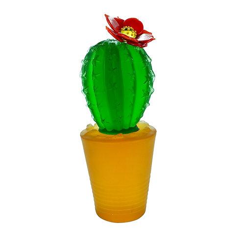 Cactus Green in a Pot