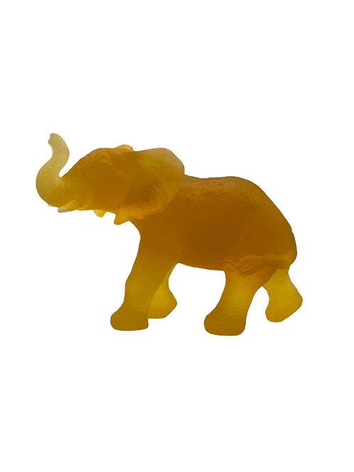 Young Quanza Elephant Light Amber