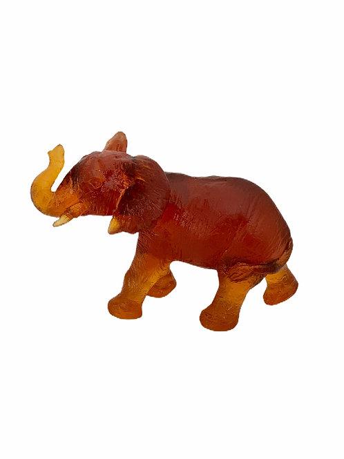 Young Quanza Elephant Amber