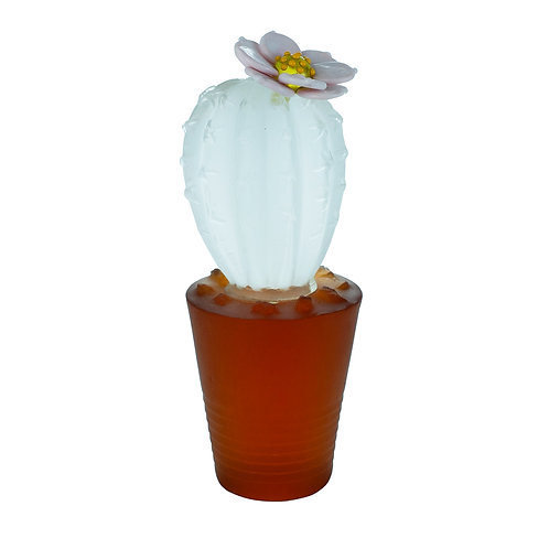Cactus Ice in a Pot