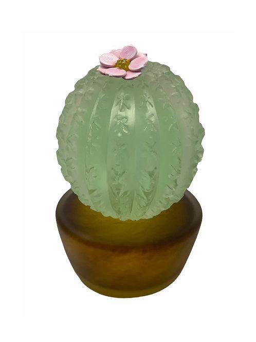 Large  Cactus Celadon in a Pot