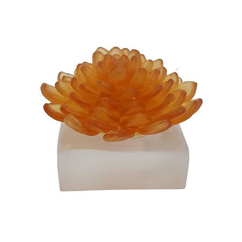 Lillies of Pera Amber
