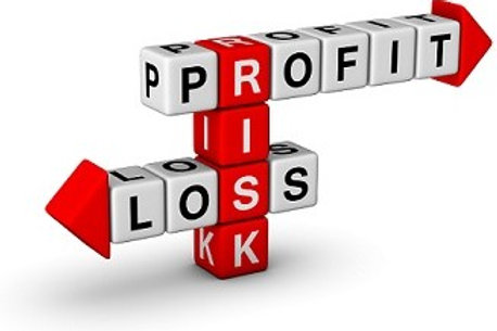 Profit and Loss Statement of A Congregate Health Facility