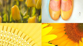 The Colour of Spring: Yellow