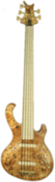 Torun Instruments lily Panther Burl