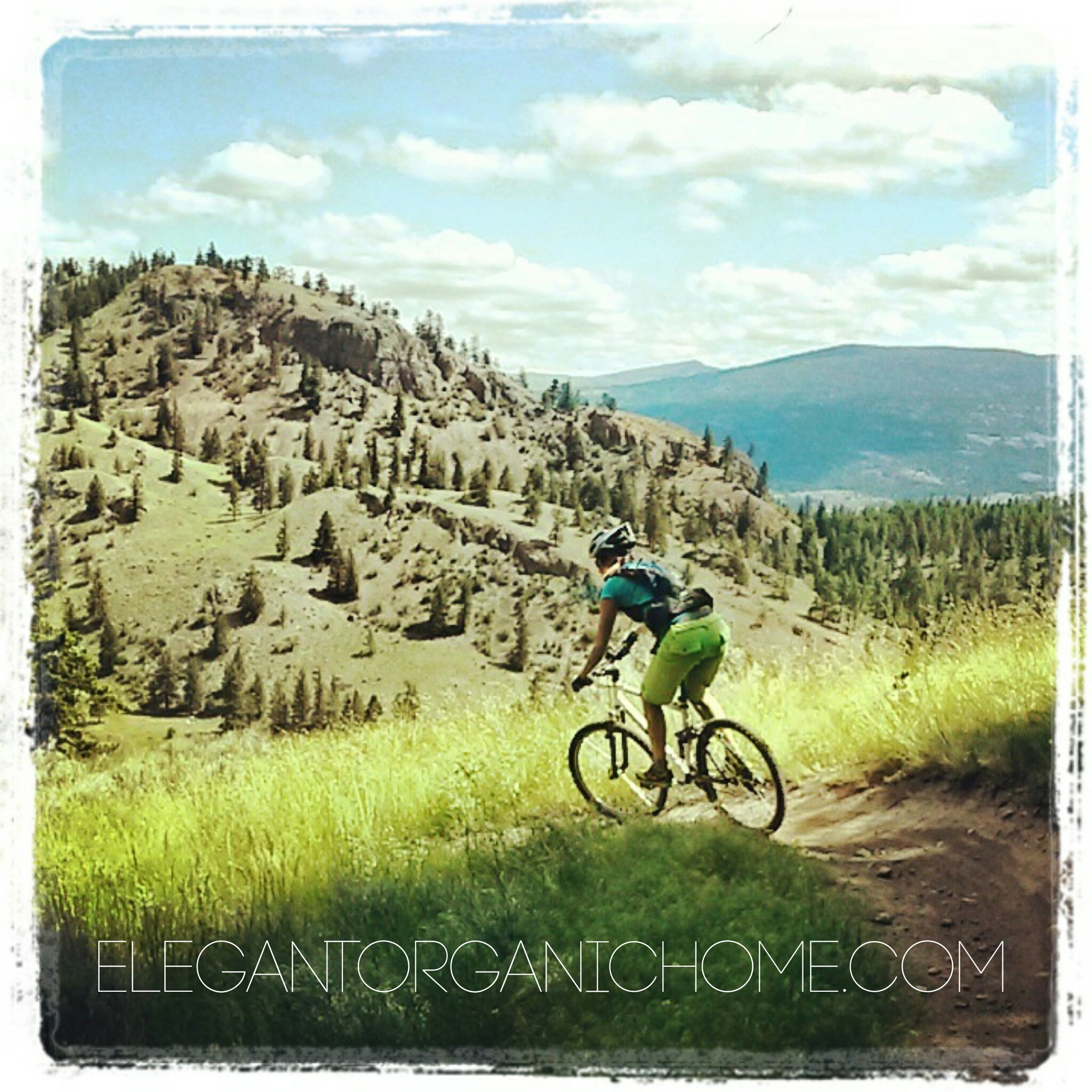 mountain biking Okanagan