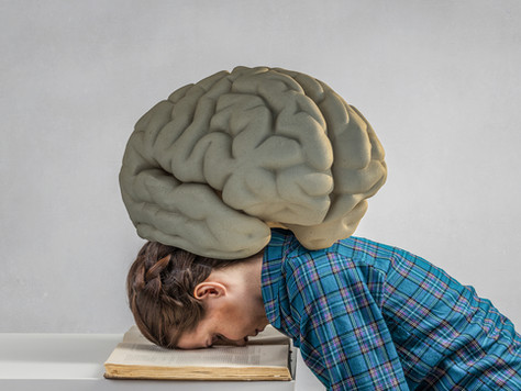 Hangry for Brain-Aid 2.0: Intellectual Athletes