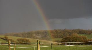 Orley Common rainbow