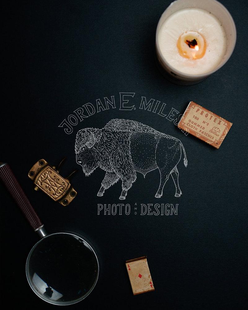 Bison Photo.jpg
