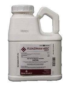 Select Source Fluazinam 40SC Select