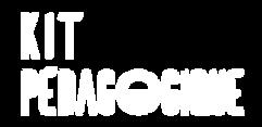 CHARTE GRAPHIQUE Ete Polaire_Logo Kit Pe