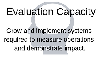 Evaluation Capacity (1).png