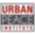 urbanpinstitute.png