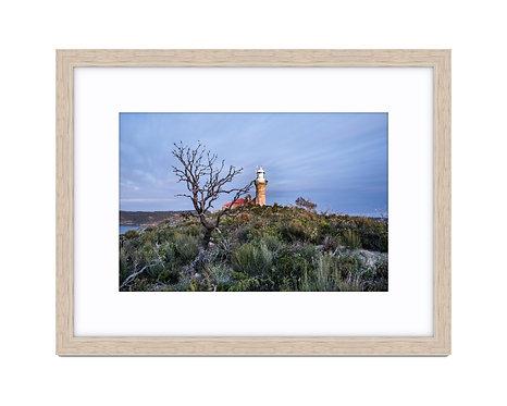 Barrenjoey Head Lighthouse - Wooden Frame Raw Oak