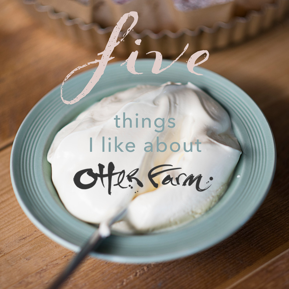 5 things I like about Otter Farm