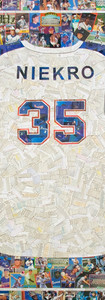 """Phil Niekro  Hall of Fame member, Phil Niekro full size replica jersey made entirely from team mate's cards from his career. 42""""x48"""". Those sleeves turned out really well, as did the 35"""