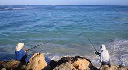 Fishing off Tailor Groyne