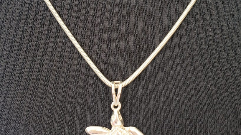 Cordão de prata com pingente tartaruga