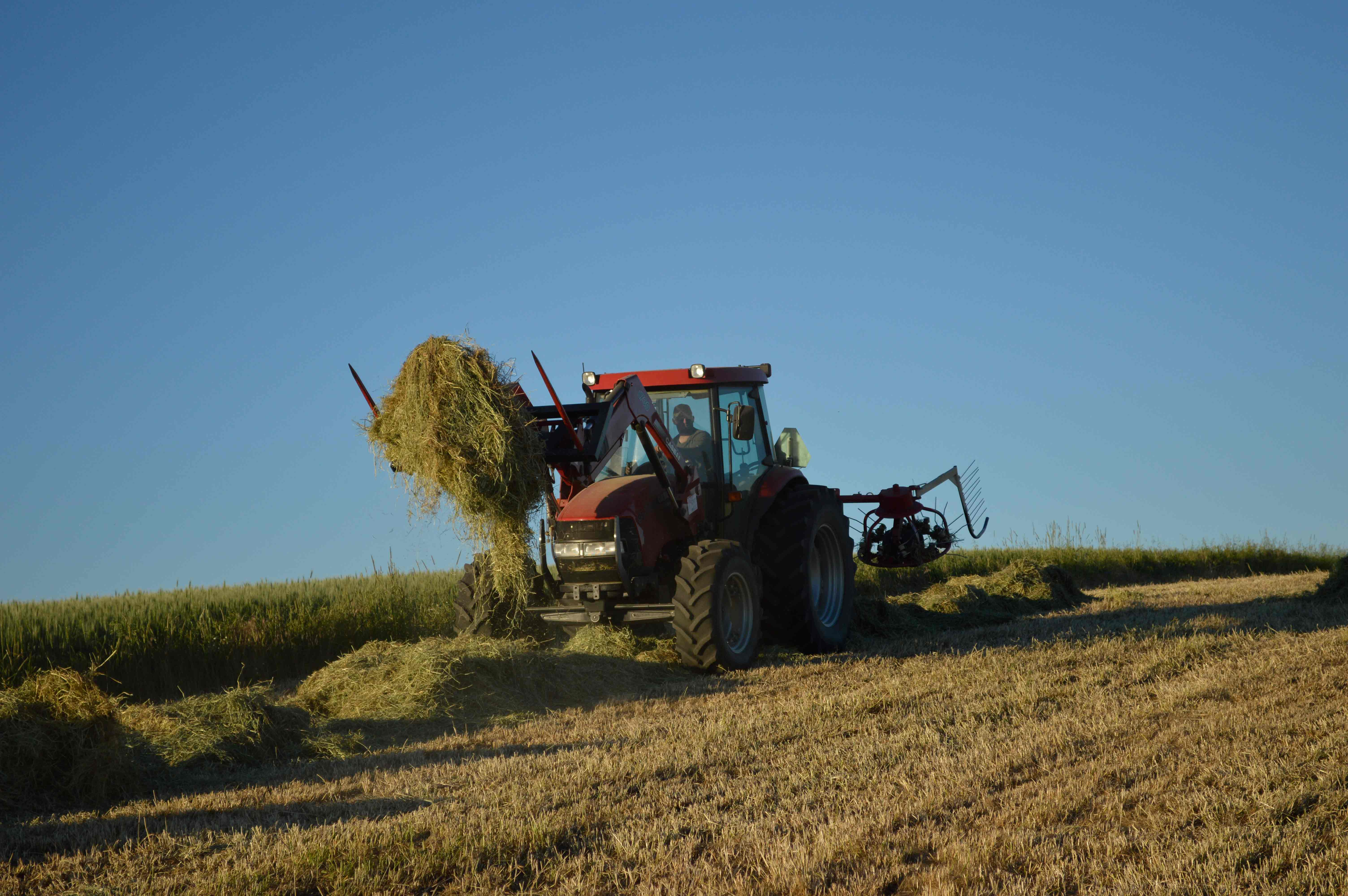 2014-hay-red-tractor