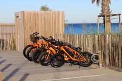 Fat bikes électriques