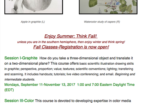 Summer Newsletter; Fall Classes