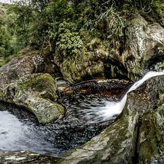 Tsitsikamma Nature Photograph