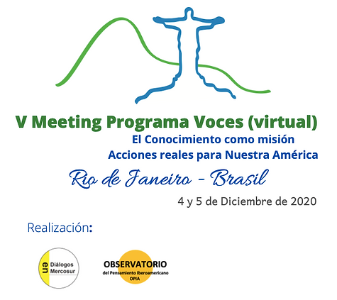 V Meeting 2020.png