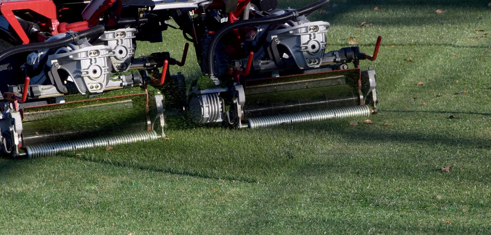mow2.jpg