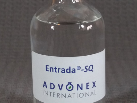 Squalane synthesized by Advonex looks and feels like the real thing