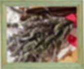 photofacefun_com_1566813103.jpg