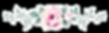 rosa orrizontale _transparent.png