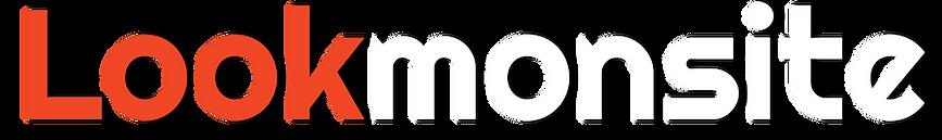 logo lookmonsite orange BLANC.png