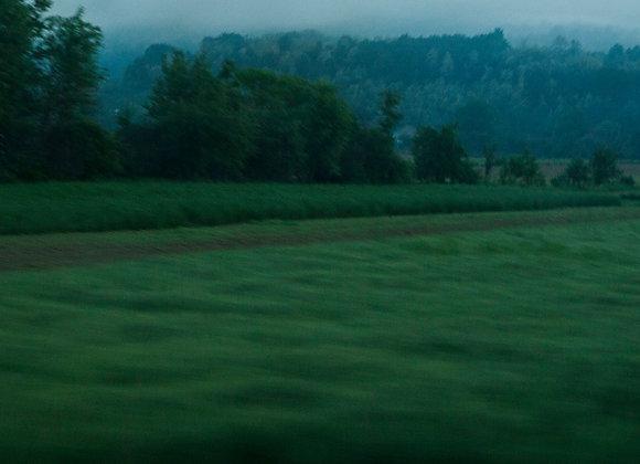 Esse verde que não me sai da memória