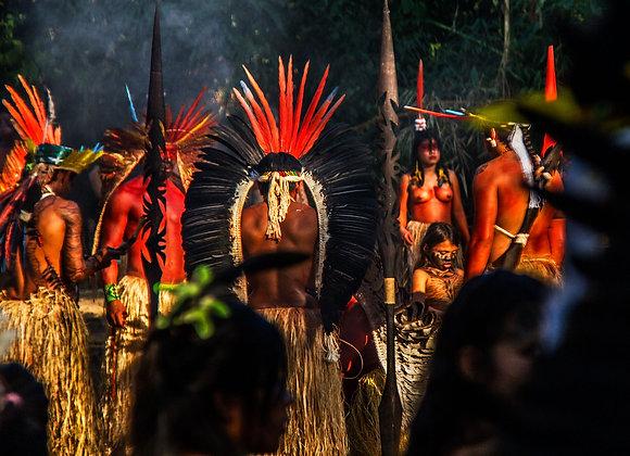 Guardiões da Amazônia
