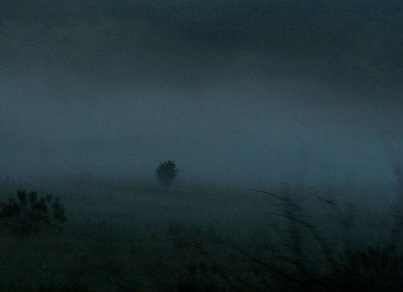 Neblina e memória- paisagens da Transilvânia I