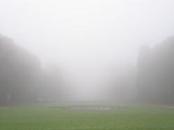 Morning mist in a Normandy Garden