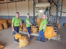 Mitarbeiter beim Kartoffelverkauf