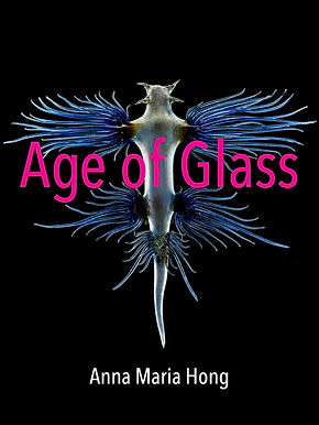 Hong Cover Age of Glass.jpg