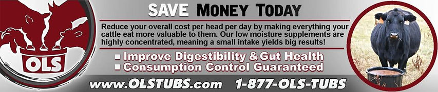 Save-money-with-ols-tubs-1024x216.jpg