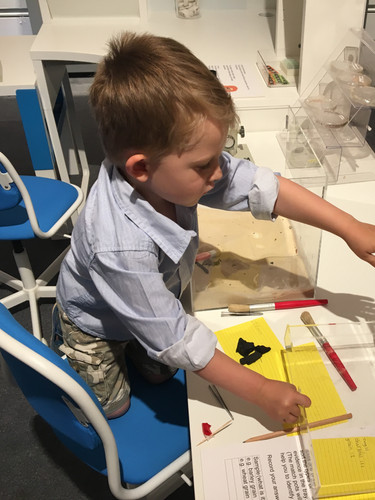 The science lab in the museum exhibition