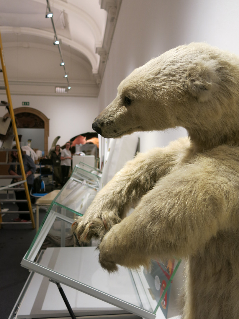 Polar bear in the museum exhibition